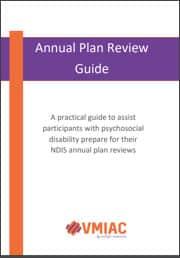 annual plan cover